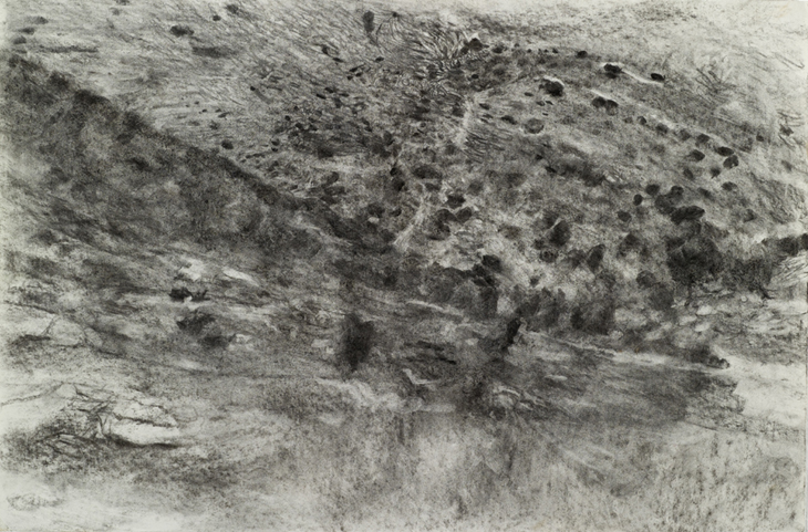 View, 2010, charcoal on paper, 50 X 65 cm